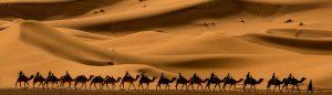Sahara dunes erg Chebbi